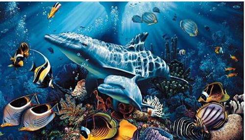 气候变化导致有毒鱼类出现.jpg