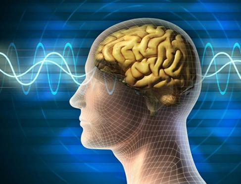 大脑如何让你专注