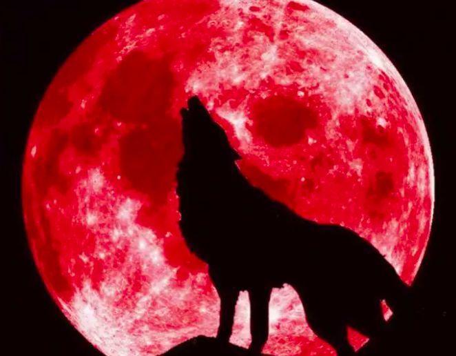 天文盛宴超级月亮偶遇月全食.jpeg