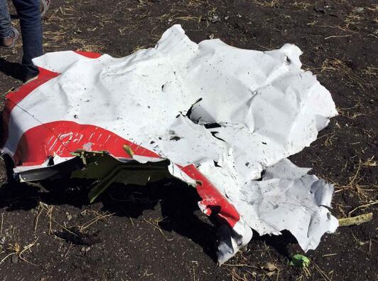 埃航客机失事无人生还 机上8名中国乘客遇难.jpg