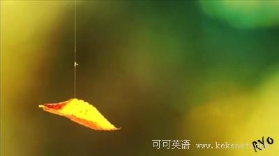 10句暖心话,劝慰你的失落朋友(图)