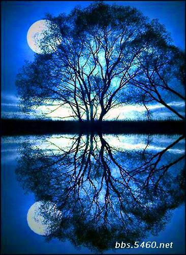 树林月色水粉画
