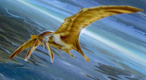 that gives you sense of what quetzalcoatlus would look like in